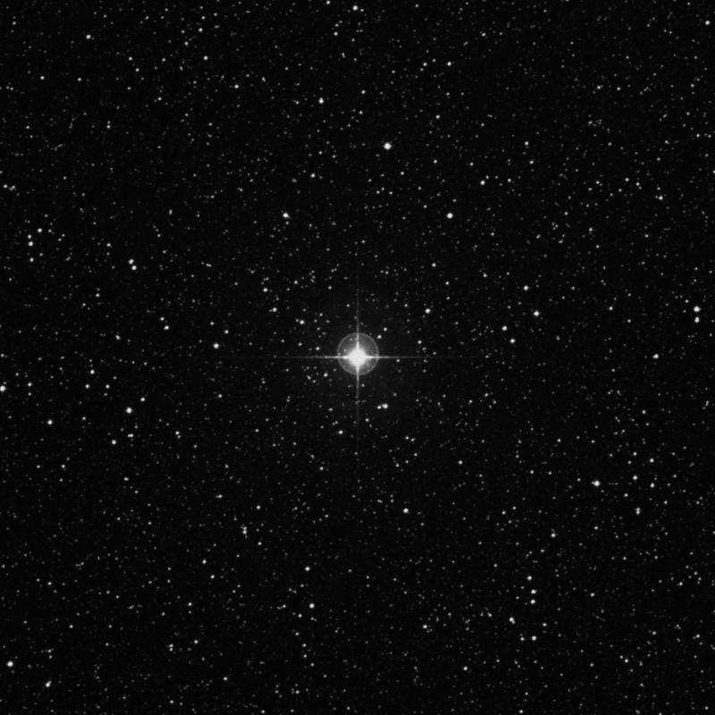 Image of φ Sagittarii (phi Sagittarii) star