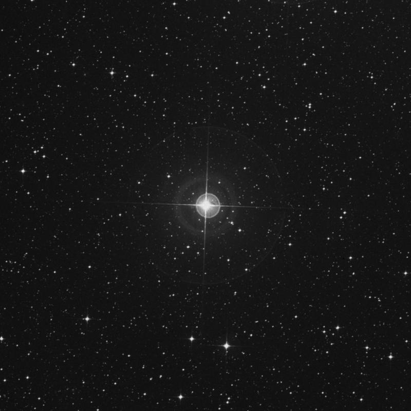 Image of Arkab Posterior - β2 Sagittarii (beta2 Sagittarii) star