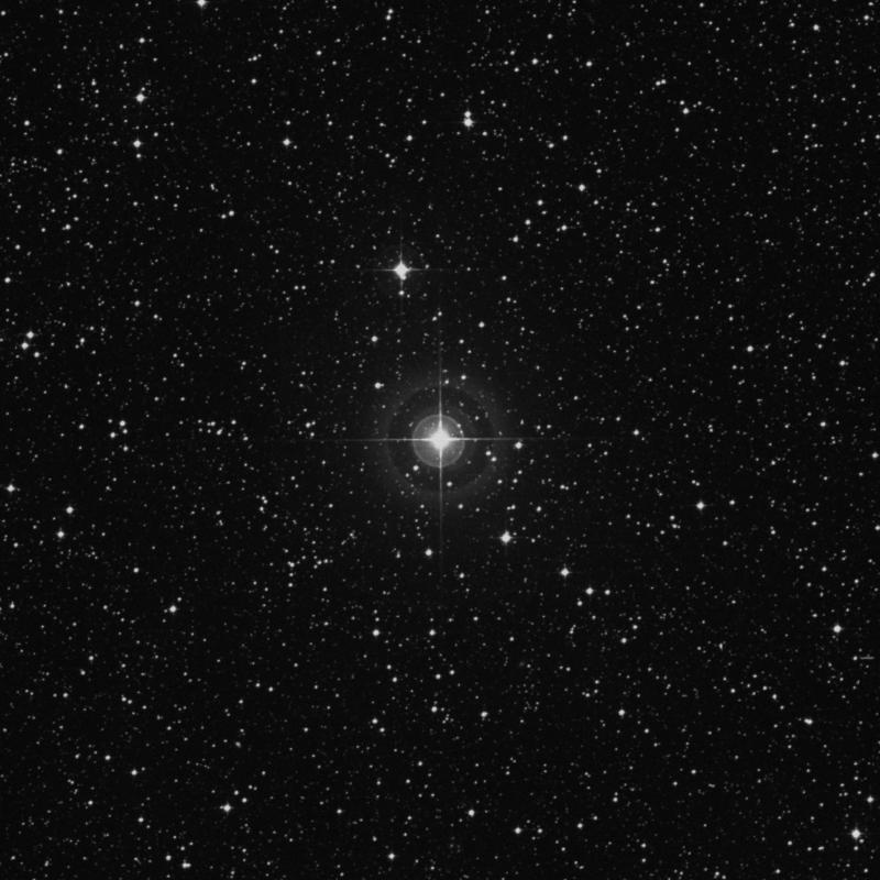 Image of χ1 Sagittarii (chi1 Sagittarii) star