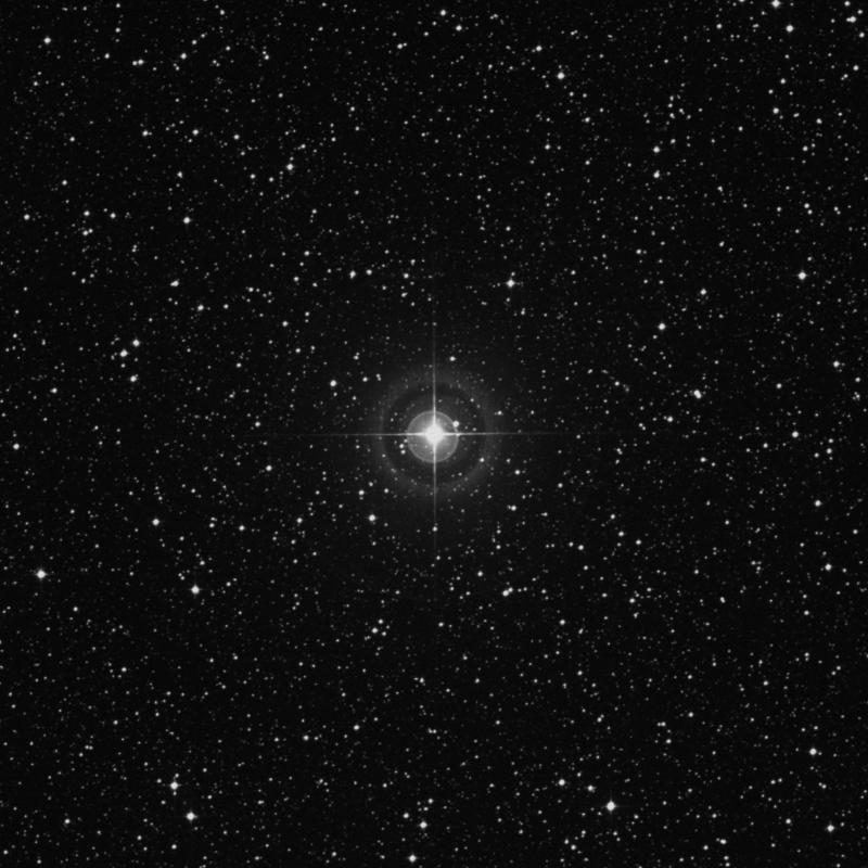 Image of χ3 Sagittarii (chi3 Sagittarii) star