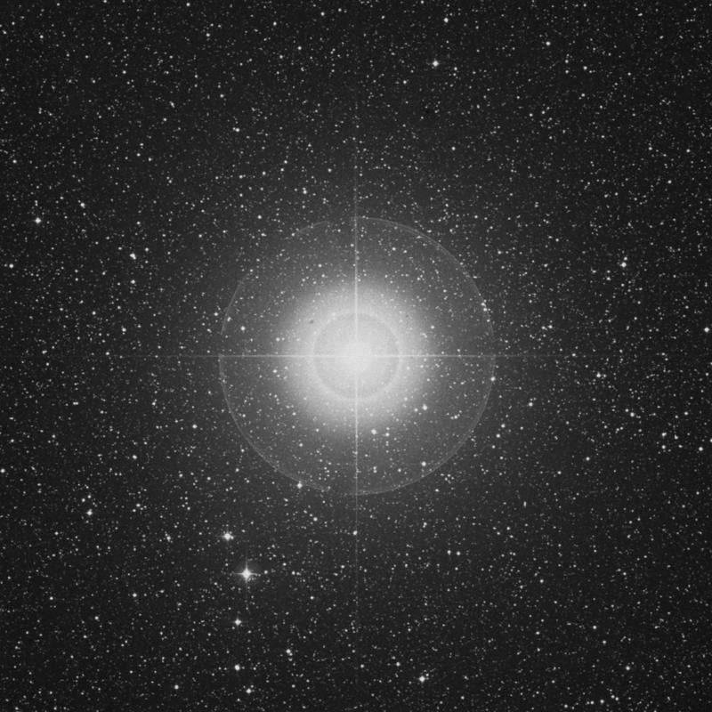 Image of Tarazed - γ Aquilae (gamma Aquilae) star