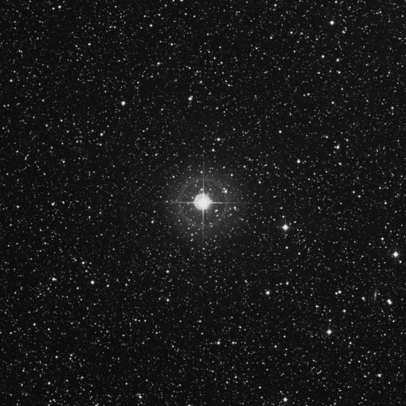 Image of Libertas - ξ Aquilae (xi Aquilae) star