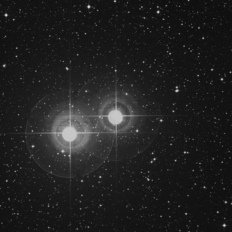 Image of α1 Capricorni (alpha1 Capricorni) star
