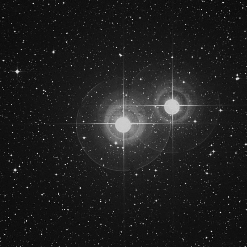 Image of Algedi - α2 Capricorni (alpha2 Capricorni) star