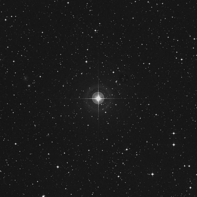 Image of HR7905 star