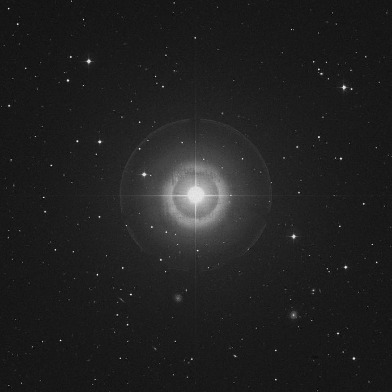 Image of Kaffaljidhma - γ Ceti (gamma Ceti) star