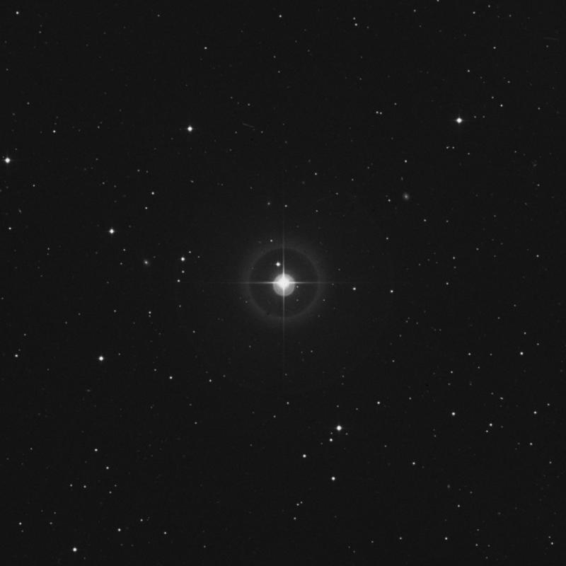 Image of 38 Arietis star