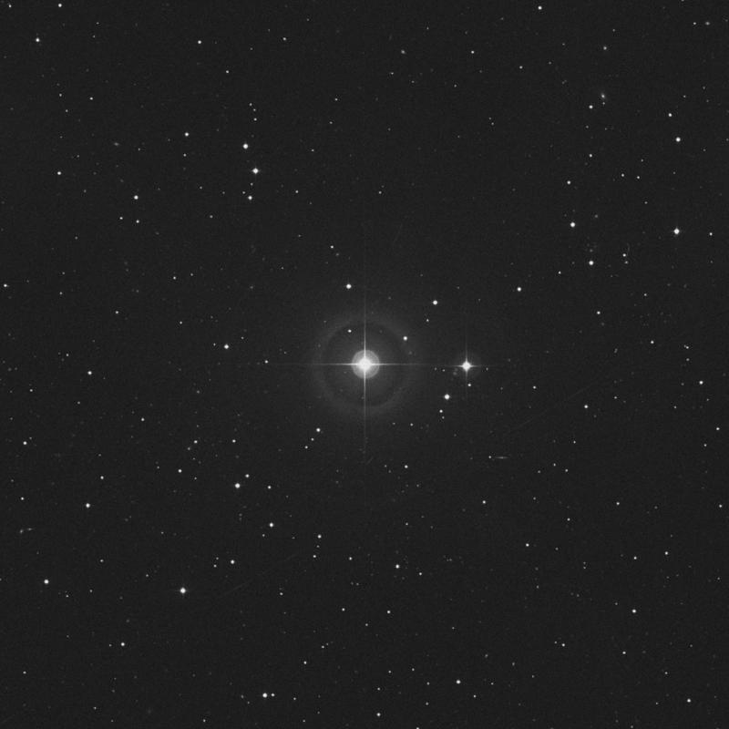 Image of HR816 star