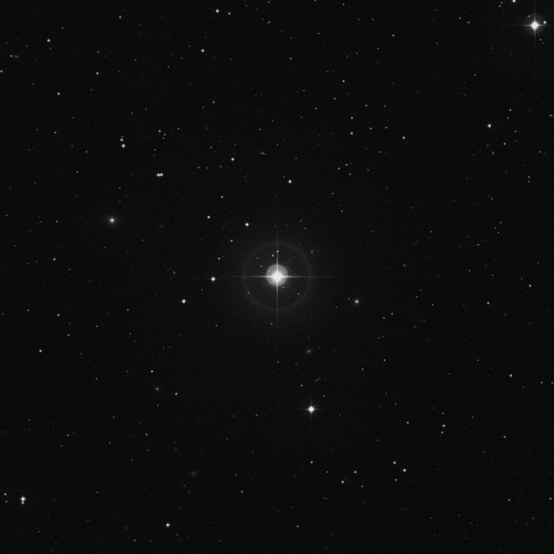 Image of 40 Arietis star