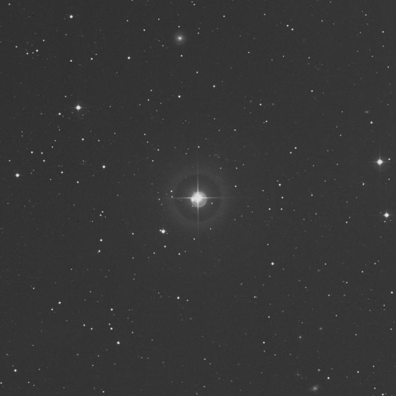 Image of π Arietis (pi Arietis) star