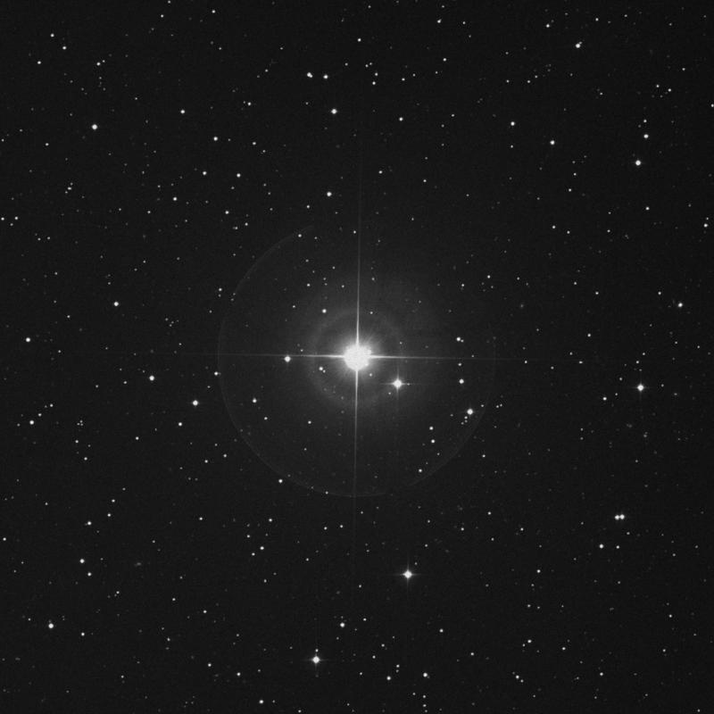 Image of Bharani - 41 Arietis star