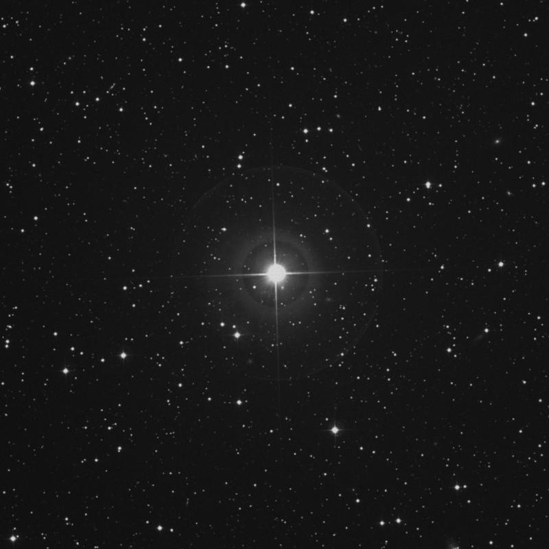 Image of 16 Persei star