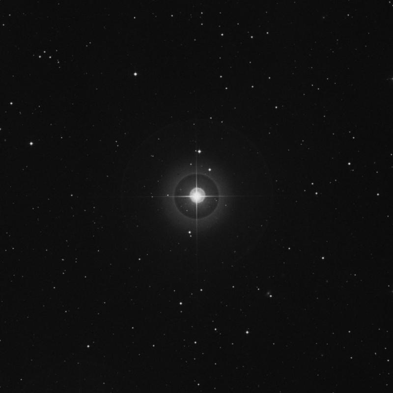 Image of ρ2 Arietis (rho2 Arietis) star