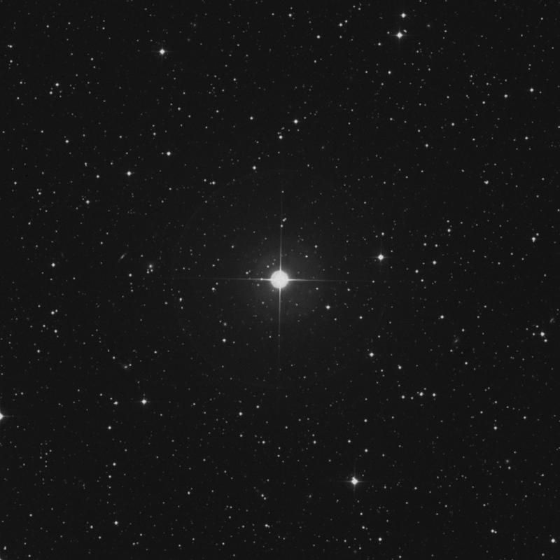 Image of π Persei (pi Persei) star