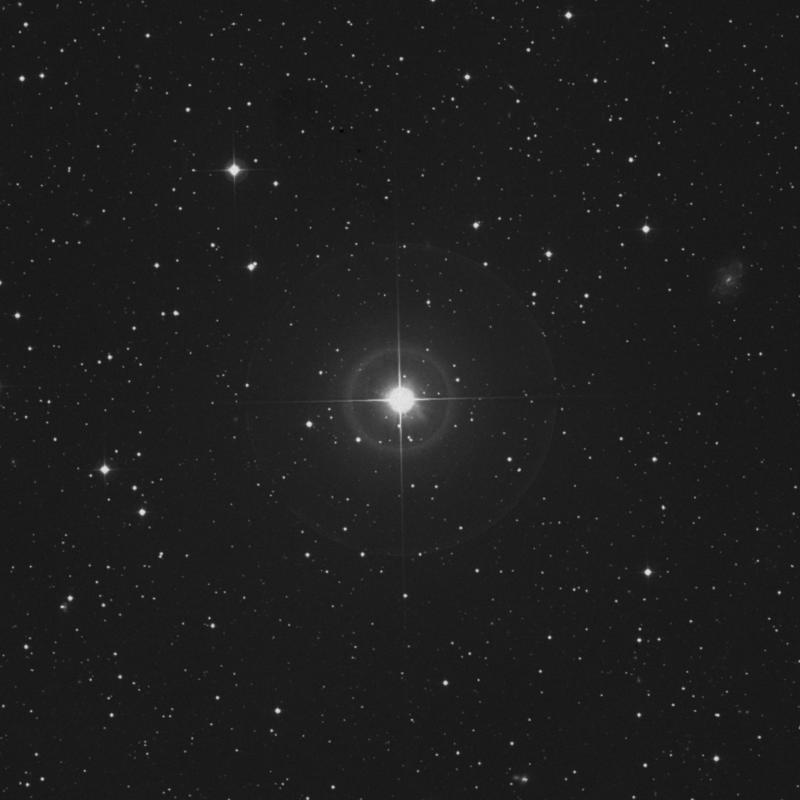 Image of 24 Persei star