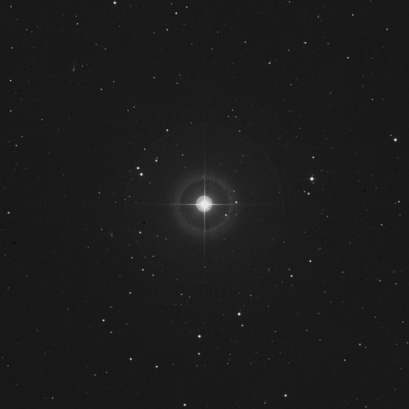 Image of λ Ceti (lambda Ceti) star