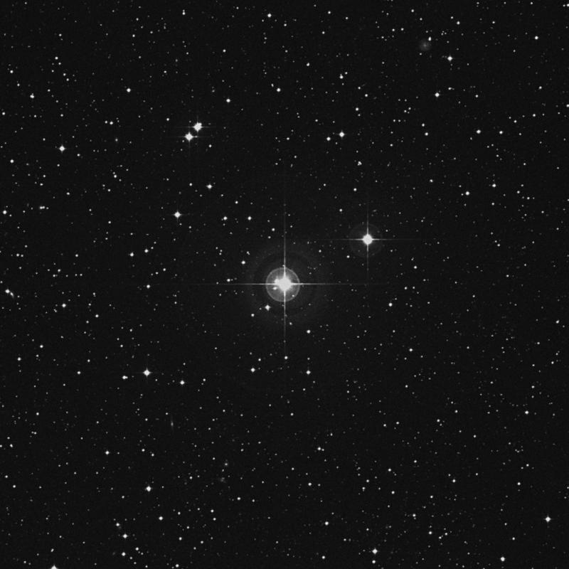 Image of HR8017 star