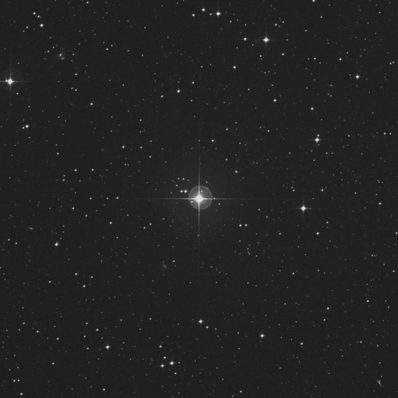 Image of χ Capricorni (chi Capricorni) star