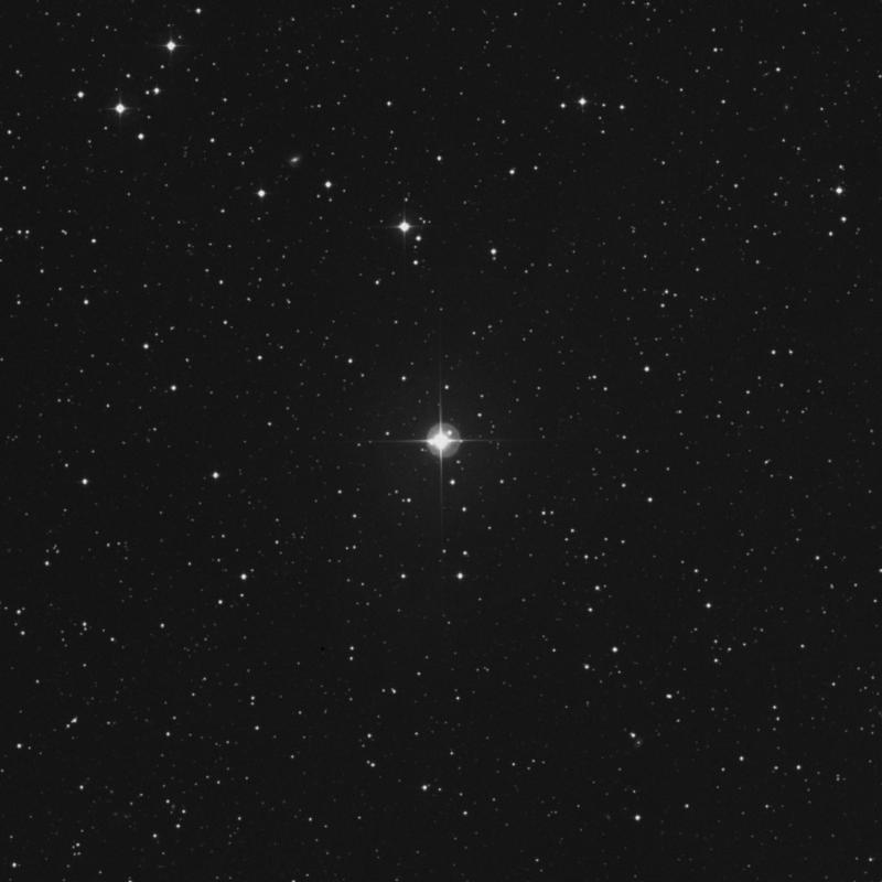 Image of HR8348 star