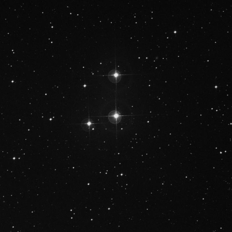 Image of HR8367 star