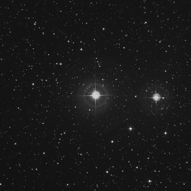 Image of π2 Pegasi (pi2 Pegasi) star