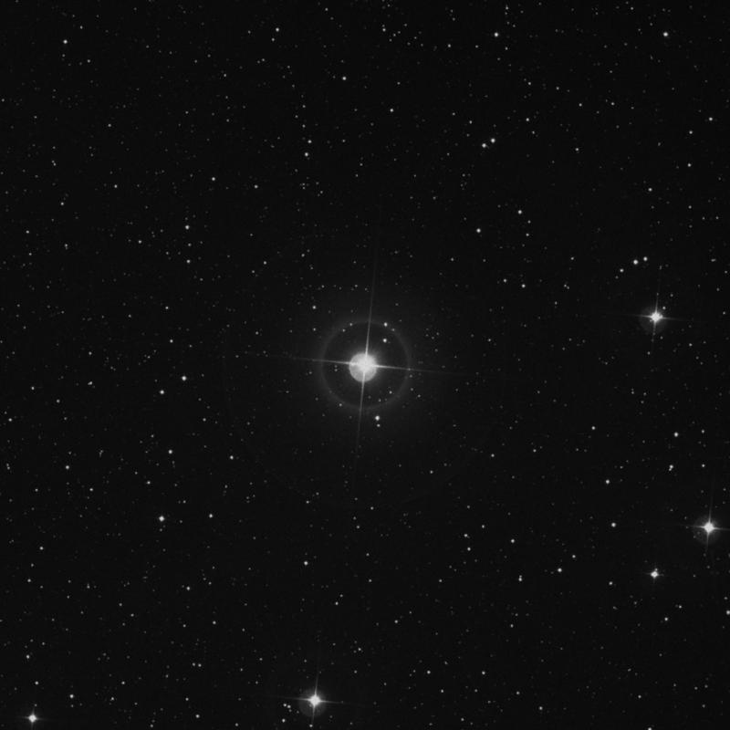 Image of 24 Cephei star