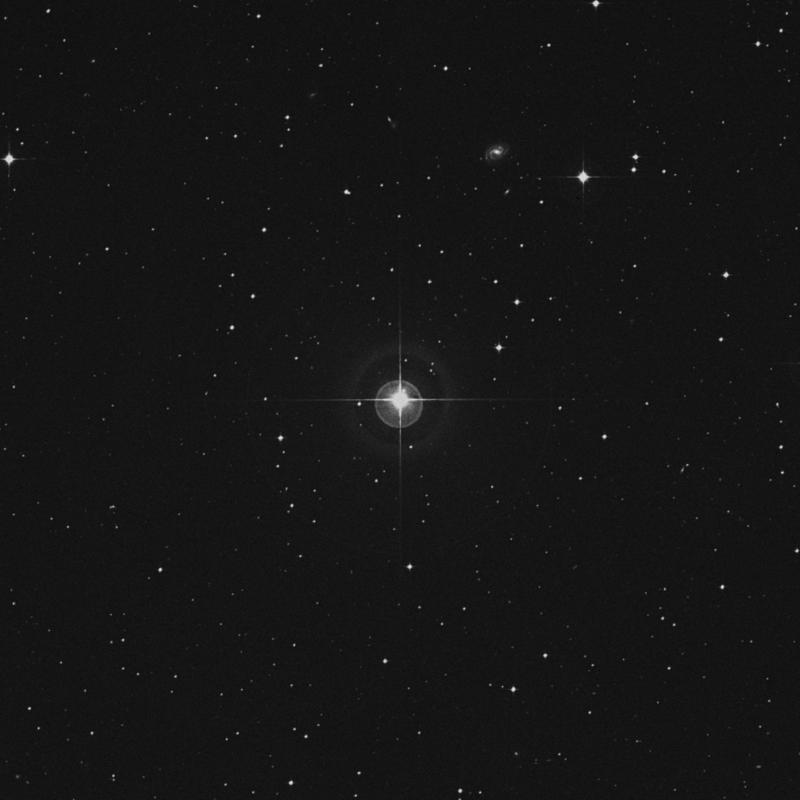 Image of ρ Aquarii (rho Aquarii) star