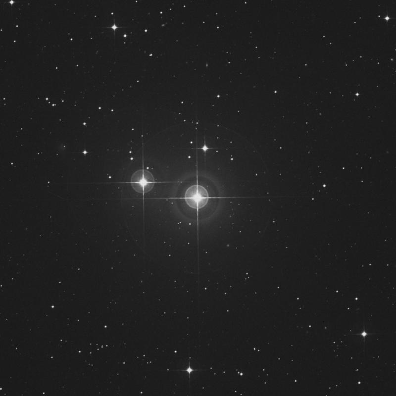 Image of π1 Gruis (pi1 Gruis) star