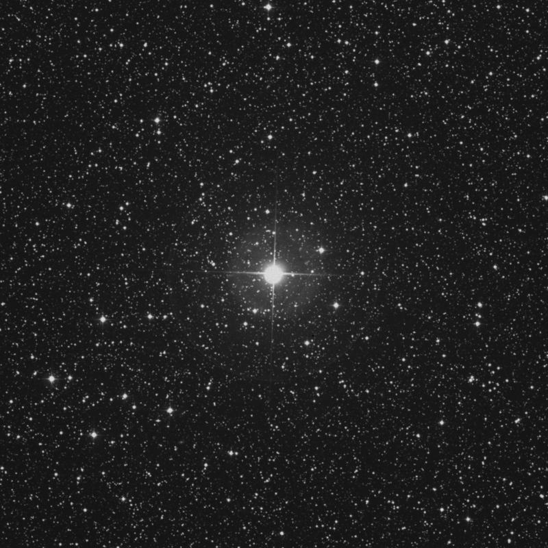 Image of β Lacertae (beta Lacertae) star