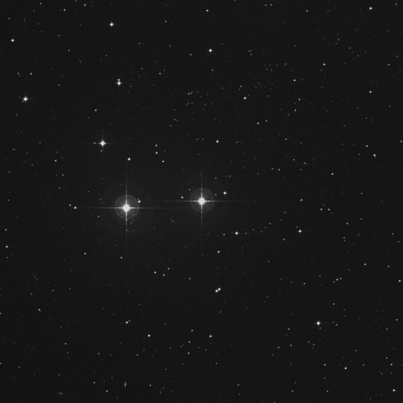 Image of σ1 Gruis (sigma1 Gruis) star