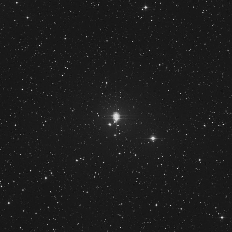 Image of 8 Lacertae star