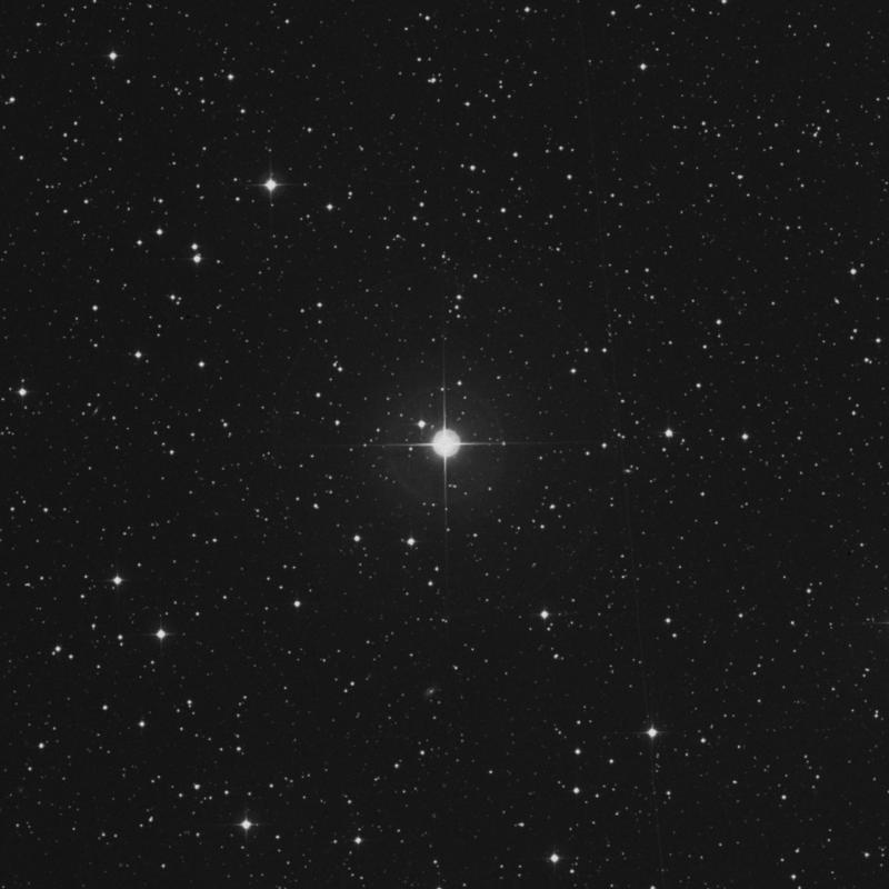Image of 10 Lacertae star