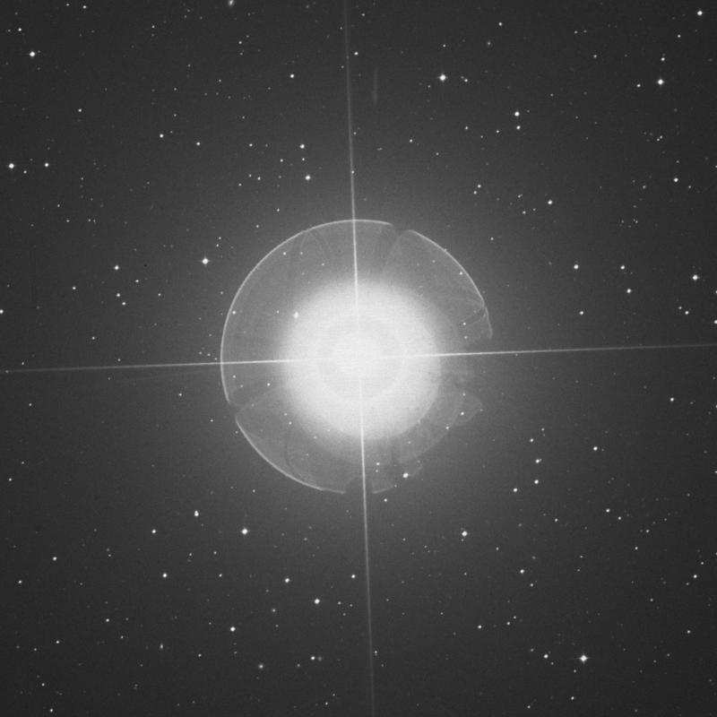 Image of Tiaki - β Gruis (beta Gruis) star