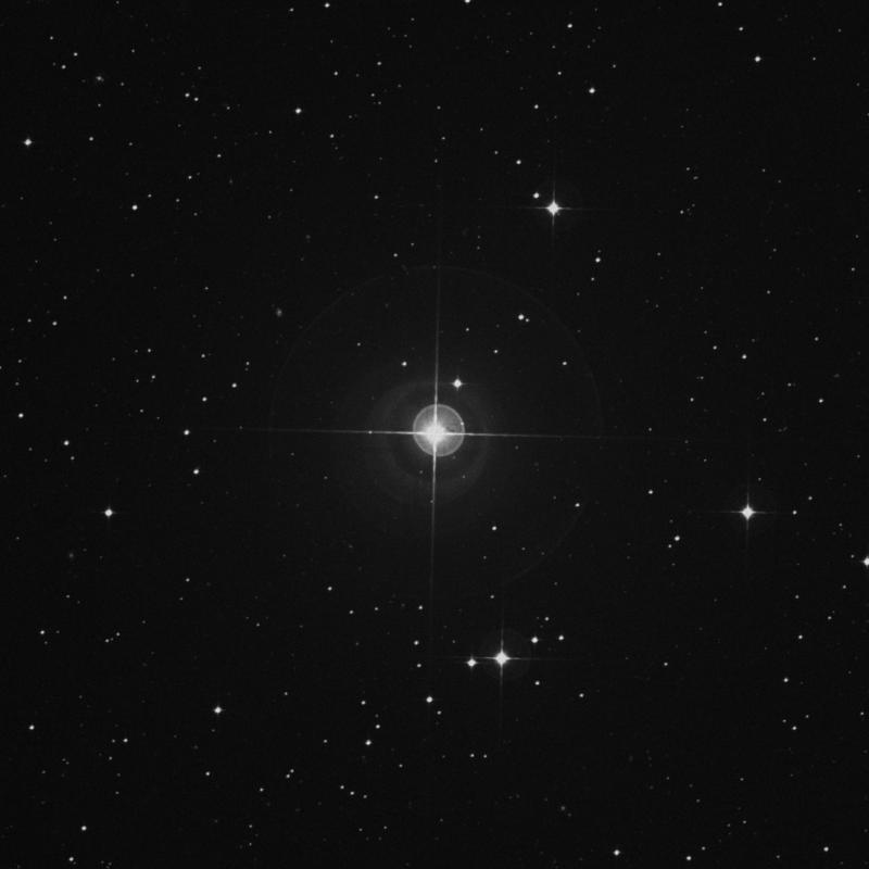 Image of ρ Gruis (rho Gruis) star