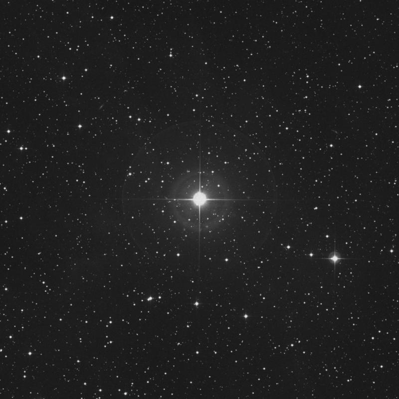 Image of 15 Lacertae star