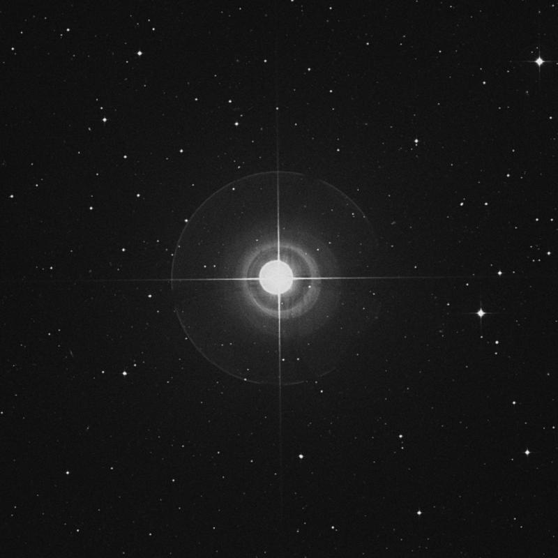 Image of Skat - δ Aquarii (delta Aquarii) star