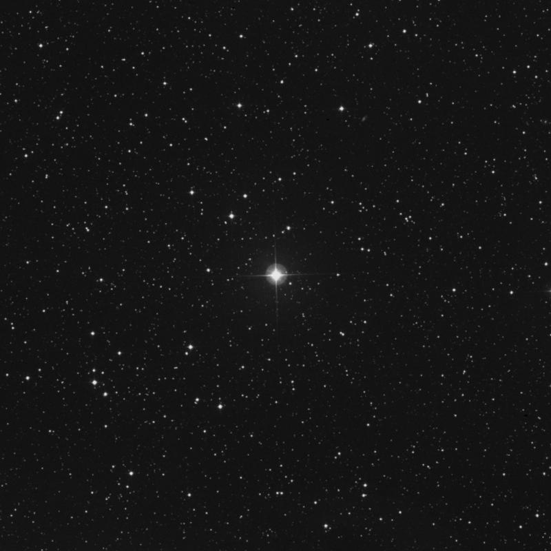 Image of HR8844 star