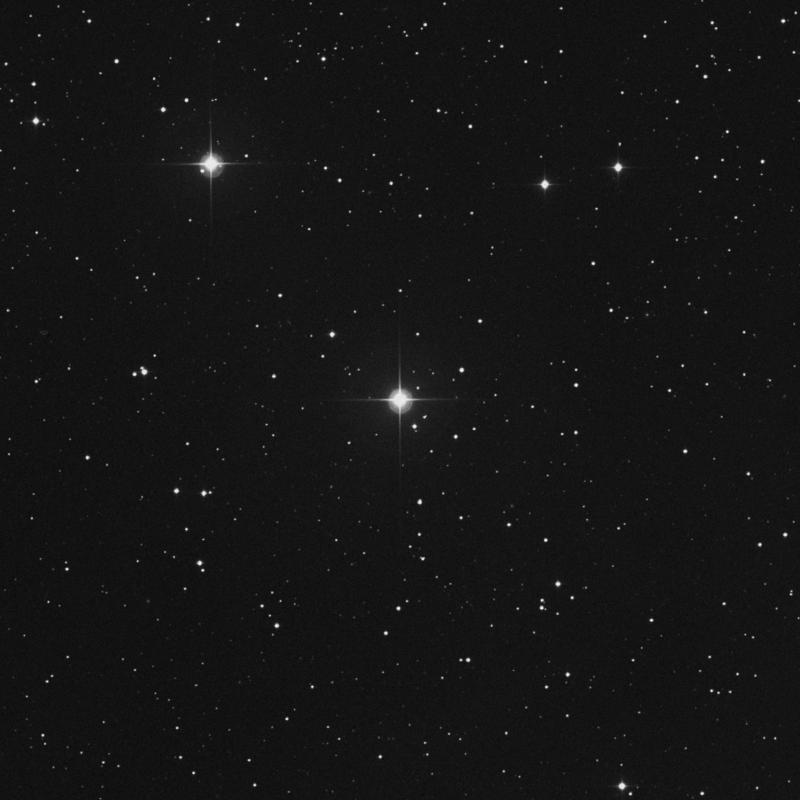 Image of 49 Arietis star