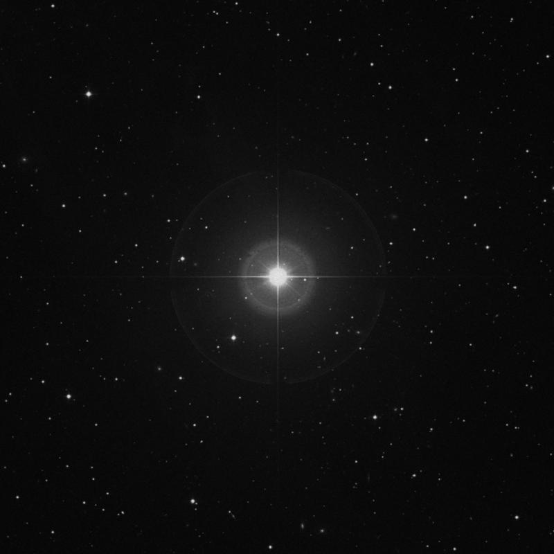 Image of Botein - δ Arietis (delta Arietis) star