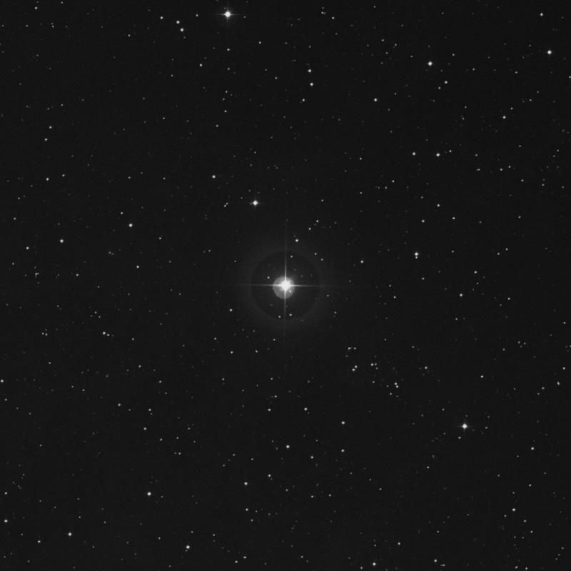 Image of 56 Arietis star