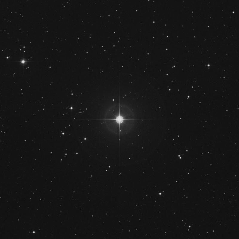 Image of ζ Arietis (zeta Arietis) star