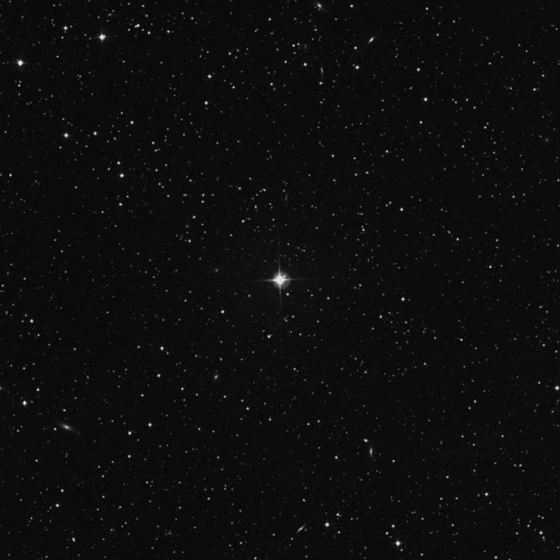 Image of HR979 star