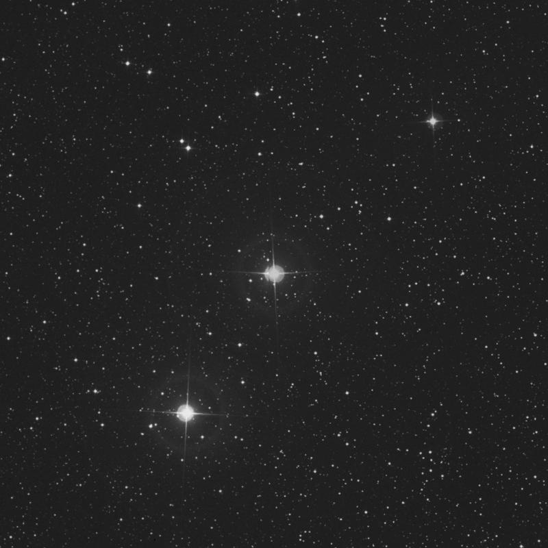 Image of 29 Persei star