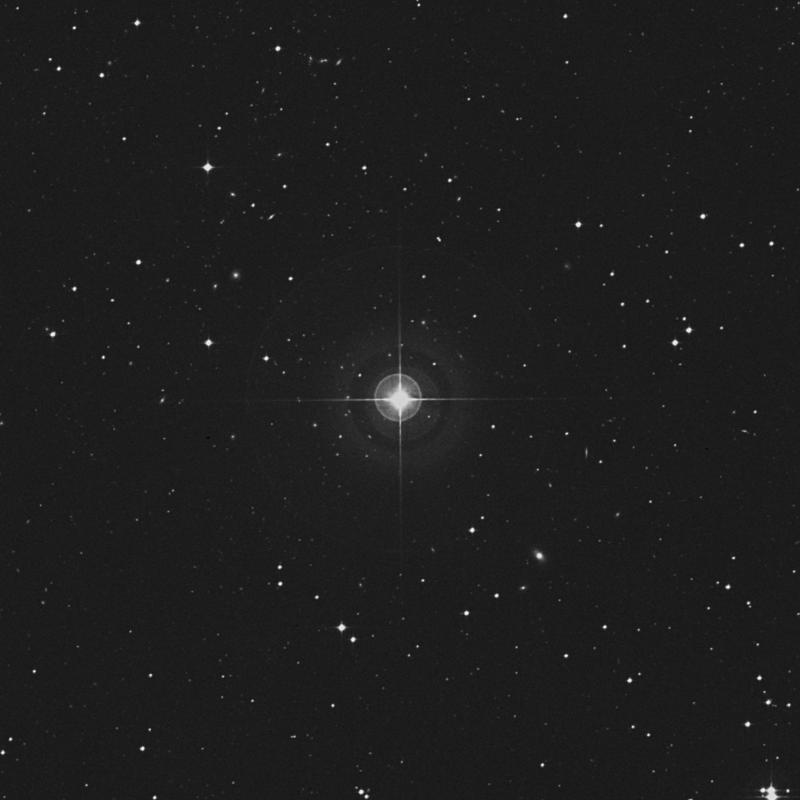 Image of 1 Ceti star